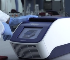 How PCR Testing Works